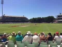 11_more_cricket